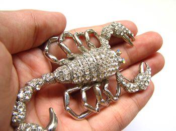 Marina - Ficha de investigación sobre el escorpión