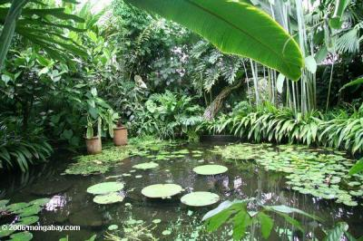 Viaje al Botánico