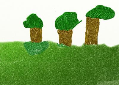 Árboles del Jardín Botánico